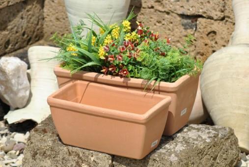 Pflanzkasten,Blumenkasten,Terracotta,antik hell,2 Größen wählbar