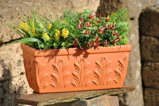 Pflanzkasten,Blumenkasten,Terracotta,Blattmuster,3 Größen wählbar